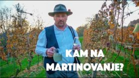 VIDEO: Kam na Martinovanje?